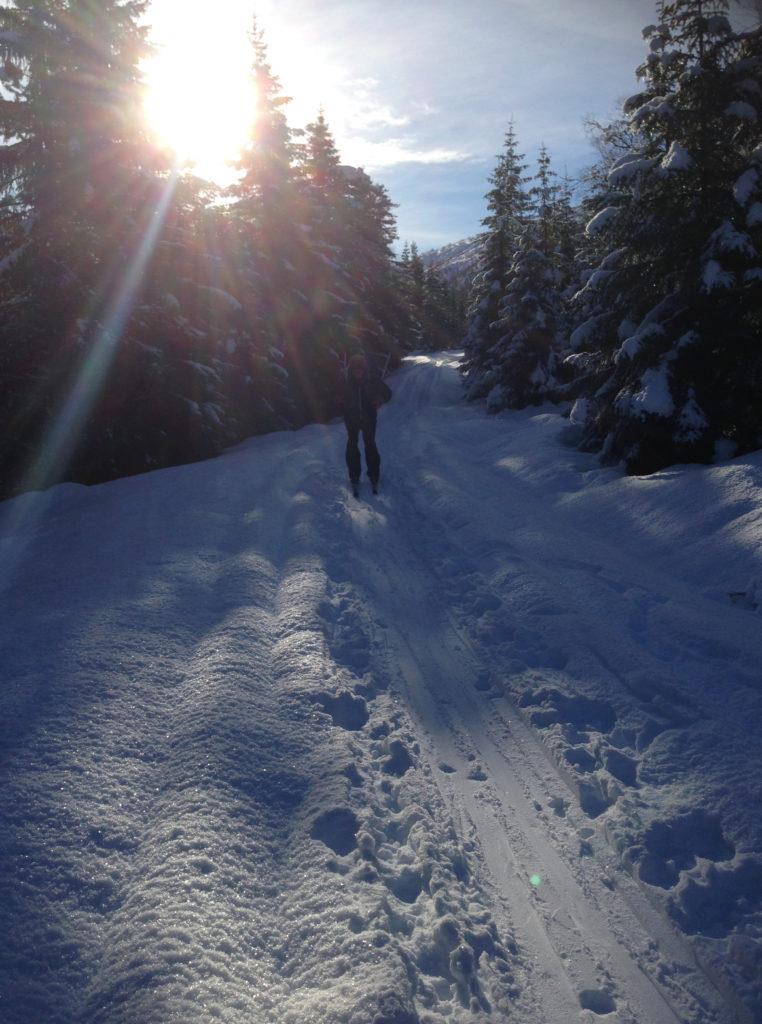Geir i langrennsløypene på Voss i nydelig solskinn