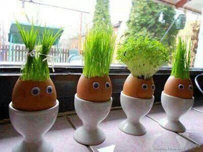 plante i eggeskall påskepynt