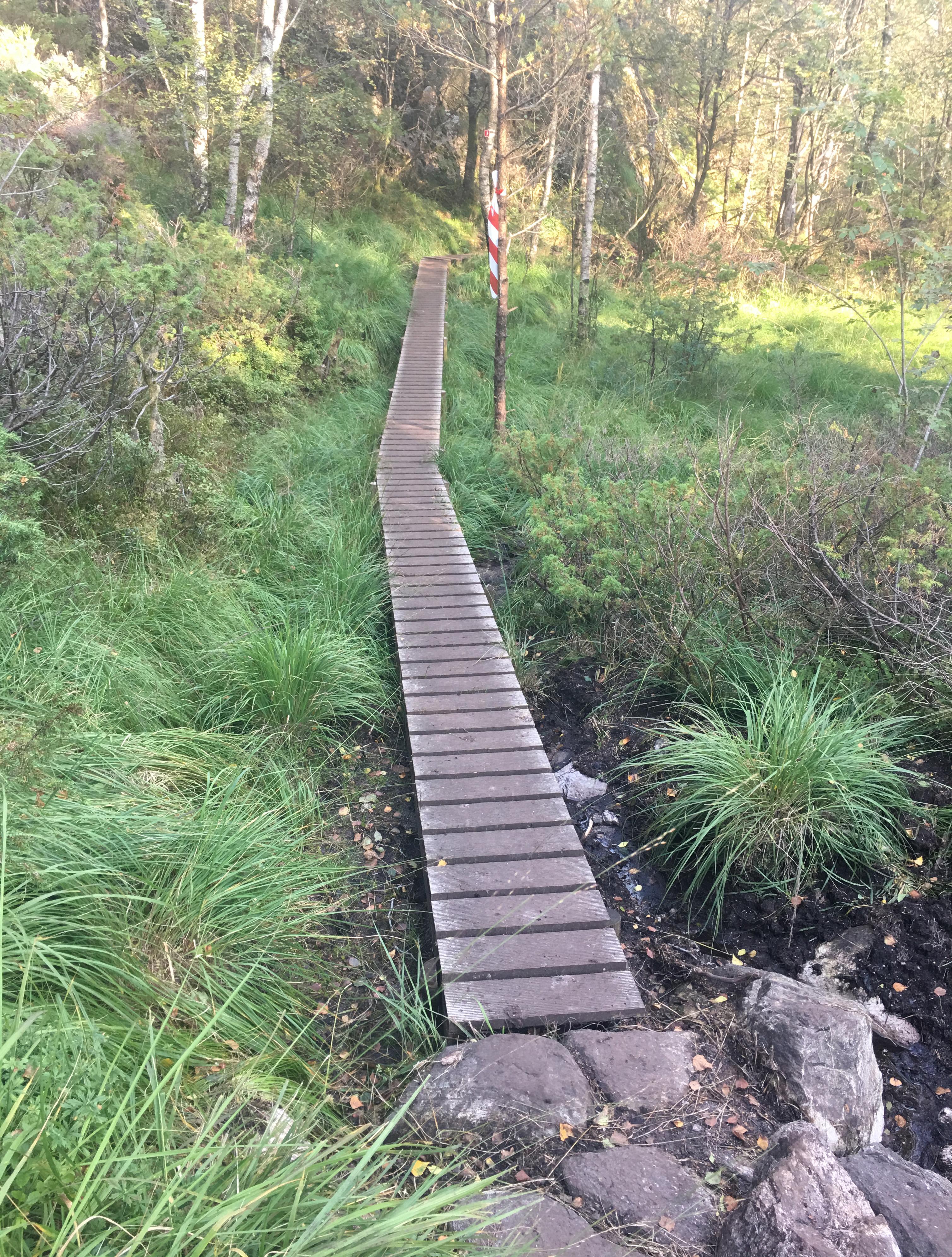 Askøy på langs - Bergheim til Skogedalen